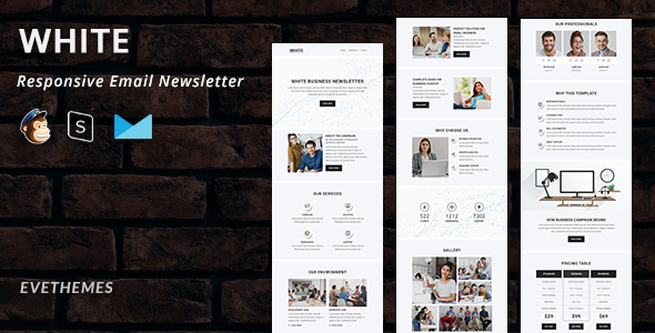 White – Responsive Email Newsletter (Nulled) [Latest Version] thumbnail